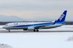 Gouei Changeさんが、新千歳空港で撮影した全日空 737-881の航空フォト(写真)
