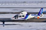 パンダさんが、札幌飛行場で撮影したオールニッポンヘリコプター AS365N3 Dauphin 2の航空フォト(写真)