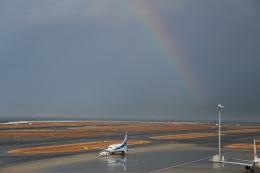 タナさんが、中部国際空港で撮影したANAウイングス 737-5L9の航空フォト(写真)
