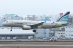 ぶる~すかい。さんが、福岡空港で撮影したエアプサン A320-232の航空フォト(写真)