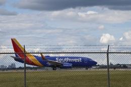 金魚さんが、ルイビル国際空港で撮影したサウスウェスト航空 737-7H4の航空フォト(飛行機 写真・画像)