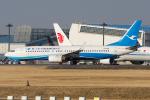 Tomo-Papaさんが、成田国際空港で撮影した厦門航空 737-86Nの航空フォト(写真)