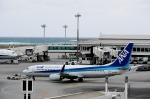 りゅうさんさんが、那覇空港で撮影した全日空 737-881の航空フォト(写真)