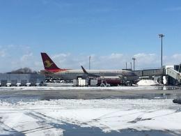 tsubasa0624さんが、函館空港で撮影した天津航空 A320-232の航空フォト(飛行機 写真・画像)