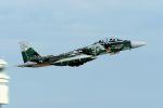 うめやしきさんが、茨城空港で撮影した航空自衛隊 F-15DJ Eagleの航空フォト(飛行機 写真・画像)