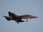 まさおみんさんが、厚木飛行場で撮影したアメリカ海兵隊 F/A-18D Hornetの航空フォト(写真)