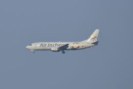 ポン太さんが、成田国際空港で撮影したエア・インチョン 737-4Y0/SFの航空フォト(飛行機 写真・画像)