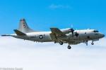 norimotoさんが、カネオヘ・ベイ海兵隊航空基地で撮影したアメリカ海軍 P-3C Orionの航空フォト(写真)