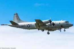 norimotoさんが、カネオヘ・ベイ海兵隊航空基地で撮影したアメリカ海軍 P-3C Orionの航空フォト(飛行機 写真・画像)