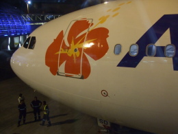 kou2315さんが、ヌーメア・ラ・トントゥータ国際空港で撮影したエアカラン A330-202の航空フォト(飛行機 写真・画像)