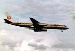 north-wingさんが、成田国際空港で撮影した日本航空 DC-8-62の航空フォト(写真)