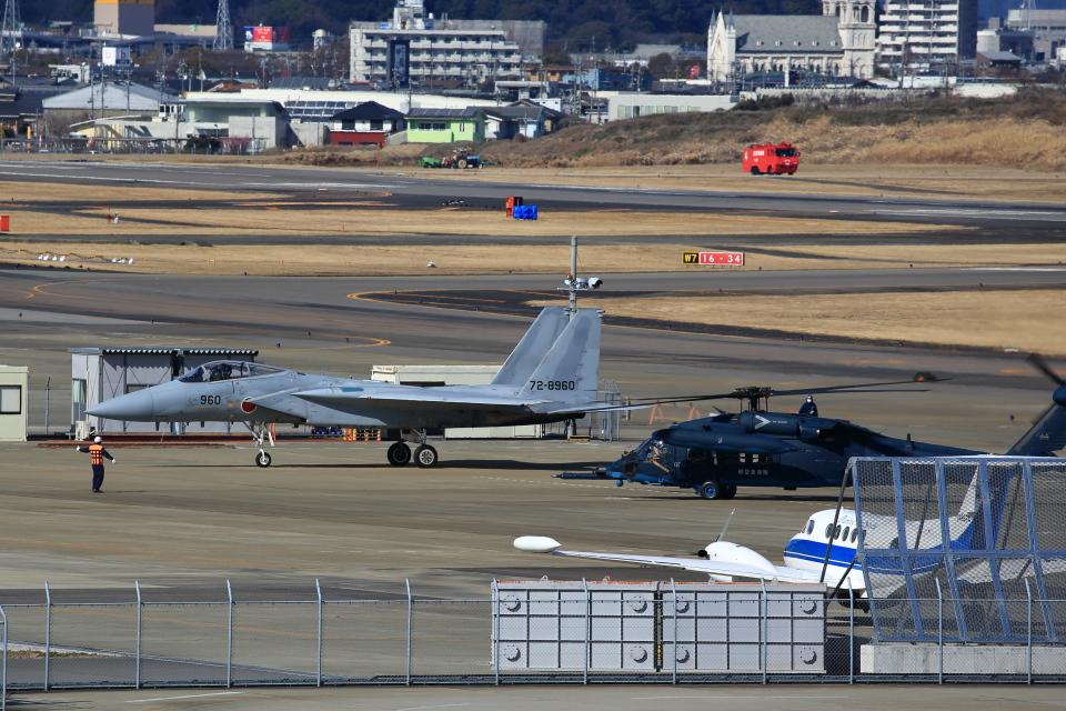 T.Sazenさんの航空自衛隊 Mitsubishi F-15J Eagle (72-8960) 航空フォト