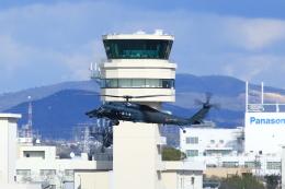 T.Sazenさんが、名古屋飛行場で撮影した航空自衛隊 UH-60Jの航空フォト(写真)
