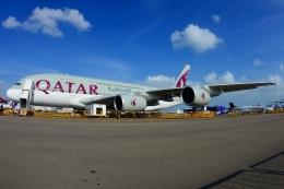 RUSSIANSKIさんが、シンガポール・チャンギ国際空港で撮影したカタール航空 A380-861の航空フォト(写真)