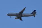 romyさんが、ボーイングフィールドで撮影したユナイテッド航空 A320-232の航空フォト(写真)