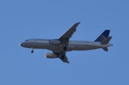 romyさんが、ボーイングフィールドで撮影したユナイテッド航空 A320-232の航空フォト(飛行機 写真・画像)