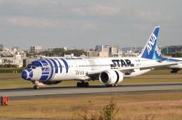 SSB46さんが、伊丹空港で撮影した全日空 787-9の航空フォト(飛行機 写真・画像)