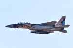 パンダさんが、茨城空港で撮影した航空自衛隊 F-15DJ Eagleの航空フォト(写真)