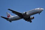 tsubasa0624さんが、羽田空港で撮影した日本トランスオーシャン航空 737-4Q3の航空フォト(飛行機 写真・画像)