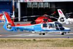 tsubasa0624さんが、東京ヘリポートで撮影した川崎市消防航空隊 AS365N3 Dauphin 2の航空フォト(写真)