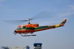 tsubasa0624さんが、東京ヘリポートで撮影したアカギヘリコプター 204B-2(FujiBell)の航空フォト(写真)