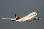 take_2014さんが、羽田空港で撮影したルフトハンザドイツ航空 747-830の航空フォト(飛行機 写真・画像)