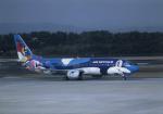 kumagorouさんが、仙台空港で撮影したエアーニッポン 737-4Y0の航空フォト(写真)