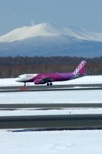 北の熊さんが、新千歳空港で撮影したピーチ A320-214の航空フォト(飛行機 写真・画像)