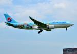 bluesky05さんが、成田国際空港で撮影した大韓航空 A330-223の航空フォト(飛行機 写真・画像)