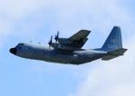じーく。さんが、嘉手納飛行場で撮影したアメリカ海軍 C-130 Herculesの航空フォト(飛行機 写真・画像)