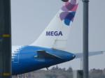 Sorakara_gonさんが、成田国際空港で撮影したメガ・モルディブ・エア 767-3Y0/ERの航空フォト(写真)