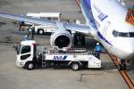 T.Sazenさんが、伊丹空港で撮影したANAウイングス 737-5L9の航空フォト(写真)
