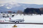 りんたろうさんが、青森空港で撮影した日本航空 737-846の航空フォト(写真)