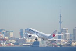 カヤノユウイチさんが、羽田空港で撮影した日本航空 787-8 Dreamlinerの航空フォト(写真)