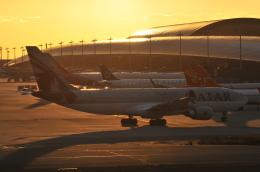 Orange linerさんが、関西国際空港で撮影したカタール航空 A330-202の航空フォト(飛行機 写真・画像)