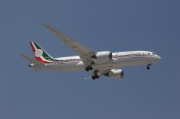 speedbird019さんが、メキシコ・シティ国際空港で撮影したメキシコ空軍 787-8 Dreamlinerの航空フォト(飛行機 写真・画像)