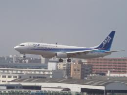 Dream Linerさんが、福岡空港で撮影した全日空 737-881の航空フォト(飛行機 写真・画像)