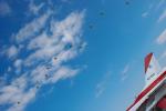 パンダさんが、入間飛行場で撮影した航空自衛隊 F-2Aの航空フォト(写真)