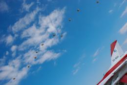 パンダさんが、入間飛行場で撮影した航空自衛隊 F-2Aの航空フォト(飛行機 写真・画像)