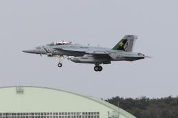 DBACKさんが、三沢飛行場で撮影したアメリカ海軍 EA-18G Growlerの航空フォト(飛行機 写真・画像)