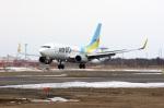 北の熊さんが、新千歳空港で撮影したAIR DO 737-781の航空フォト(写真)