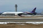 北の熊さんが、新千歳空港で撮影したタイ国際航空 777-3D7の航空フォト(飛行機 写真・画像)