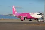 ハピネスさんが、関西国際空港で撮影したピーチ A320-214の航空フォト(飛行機 写真・画像)