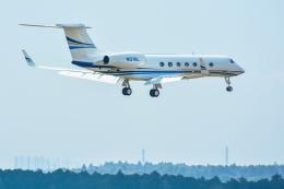 パンダさんが、成田国際空港で撮影したエア・リース・コーポレーション G-Vの航空フォト(飛行機 写真・画像)