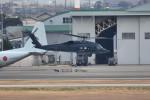 tsubasa0624さんが、名古屋飛行場で撮影した航空自衛隊 UH-60Jの航空フォト(写真)