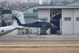 tsubasa0624さんが、名古屋飛行場で撮影した航空自衛隊 UH-60Jの航空フォト(飛行機 写真・画像)