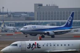 ペア ドゥさんが、新千歳空港で撮影した全日空 737-881の航空フォト(飛行機 写真・画像)