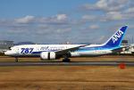 りんたろうさんが、伊丹空港で撮影した全日空 787-8 Dreamlinerの航空フォト(写真)