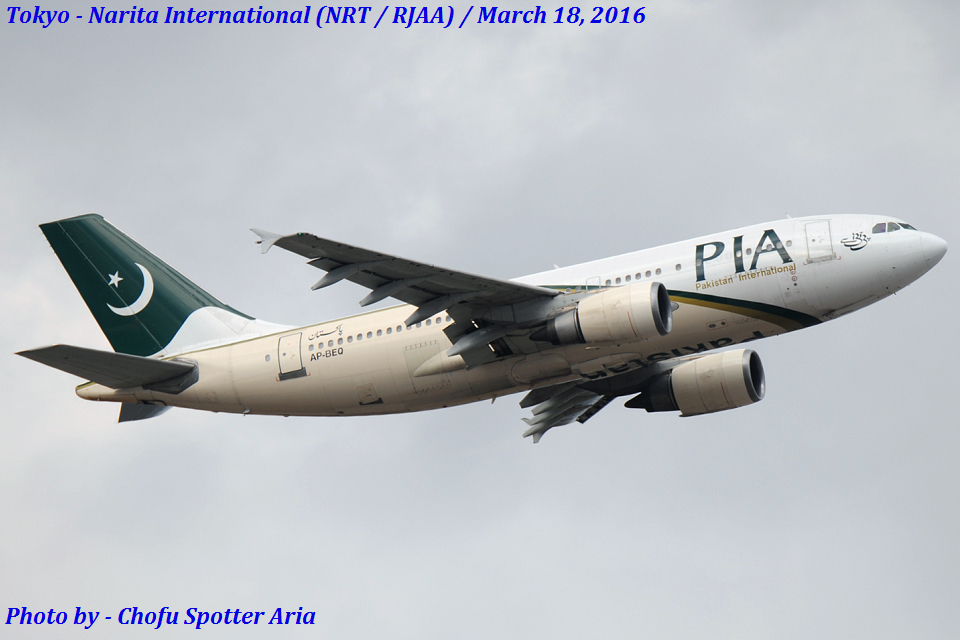 Chofu Spotter Ariaさんのパキスタン国際航空 Airbus A310-300 (AP-BEQ) 航空フォト