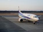 ハピネスさんが、熊本空港で撮影したANAウイングス 737-54Kの航空フォト(写真)